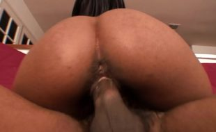 Negra peituda fudendo pelada no sofá com dotado